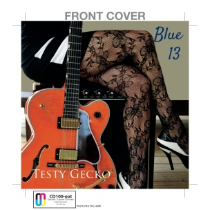 Testy Gecko - Blue 13 CD Front Cover